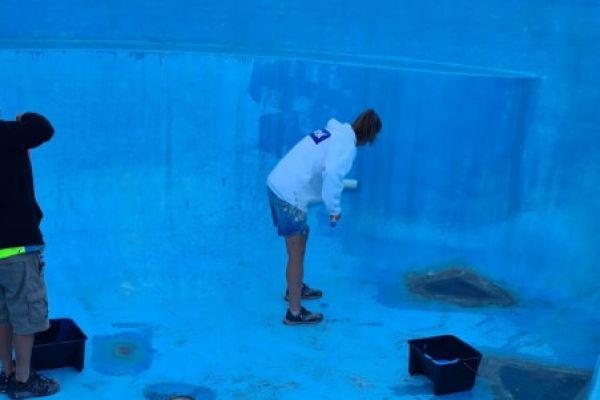 pool4A9BEA2FB-5D82-53FD-2FA2-0F5DFA0DF1B5.jpg